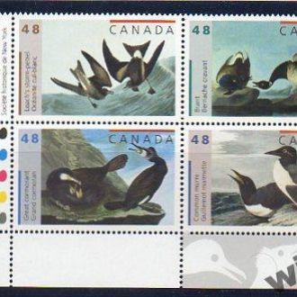 птицы - КАНАДА 2003