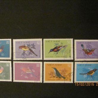 вьетнам птицы 1981 гаш