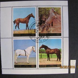 кндр лошади 1987 гаш