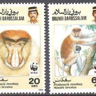 Бруней 1991 ВВФ WWF фауна обезьяны ** о