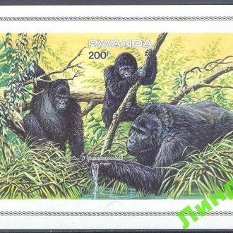 Руанда 1985 обезьяны без/зуб блок фауна ** о