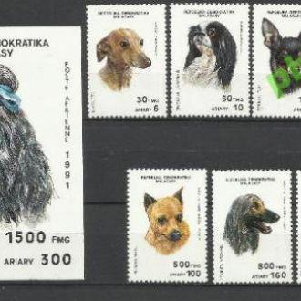 Мадагаскар 1991 фауна собаки 7м.+бл.**