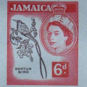 Ямайка 1960 ФАУНА ОРНИТОЛОГИЯ ПТИЦА ДОКТОР ЭНДЕМИК АРЕАЛ ЭКОСИСТЕМА ПРИРОА АГ ОМ**