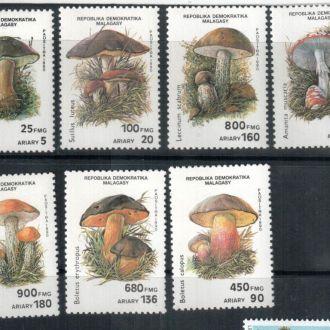 Мадагаскар 1990 грибы MNH