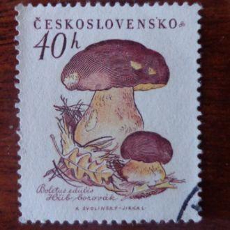 Чехословакия 1958г.грибыМ№1102(1эвро)