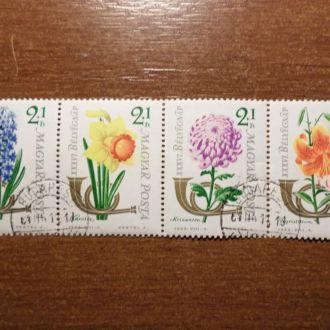 Венгрия  КЦ=5,5м  флора цветы сцепка