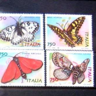 насекомые бабочки италия