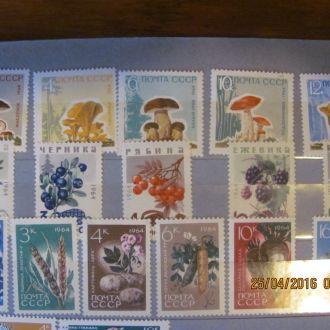 СССР 1964 гриби ягоди сг культури MNH