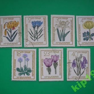 Болгария 1972 Цветы *