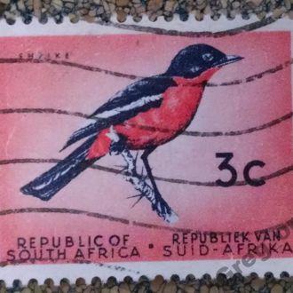 марки ЮАР фауна птицы