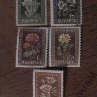 Венгрия 1950 MNH Цветы