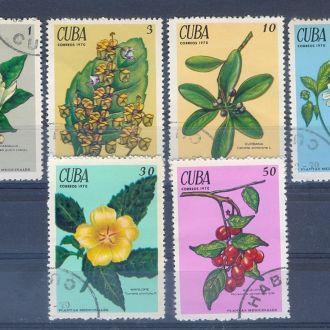 1978 КУБА флора гаш