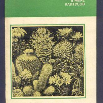 Книга. В мире кактусов. 1983 год