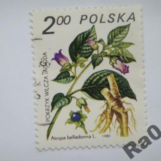 Марка почта Польша 1980 Белладонна Флора
