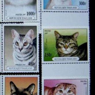 фауна коты кошки Того 1997        т