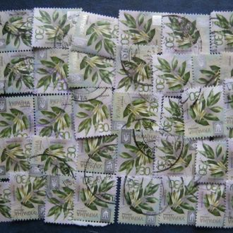 Украина  стандарт листья флора T4
