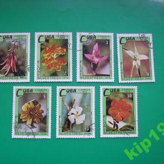 Куба 1973 Цветы  *  полн.