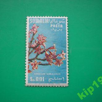 Сомали. 1955. Флора  **