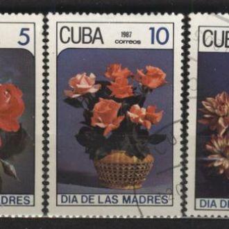 Флора Цветы 1987 Цветы