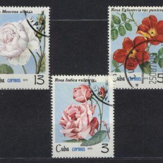 Флора Цветы Розы 1979 CUBA