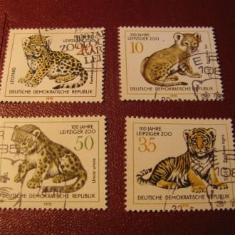 Фауна Тигри Тигры Німеччина Германия DDR 1978