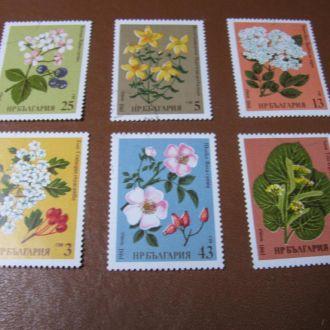 Флора Квіти Цветы Болгарія Болгария