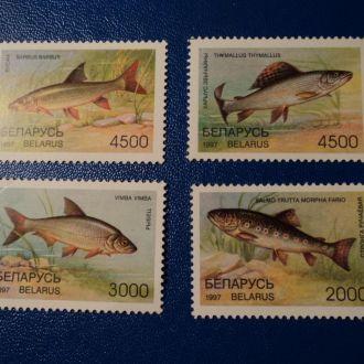 Фауна Рибки Рыбы Білорусь Беларусь 1995 **