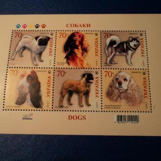 Фауна Собаки Україна Украина Блок 2007 **