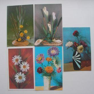 Открытки СССР Цветы 7 шт 1970-е годы