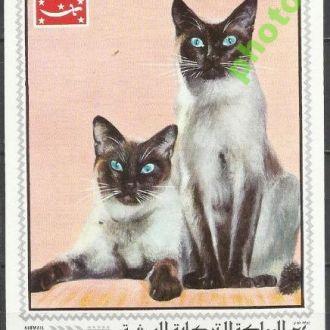 Йемен Корол. 1970 фауна коты бл.**