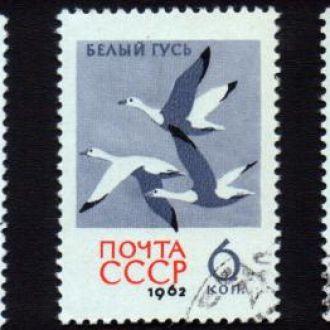 СССР 1962 Птицы (полная серия)