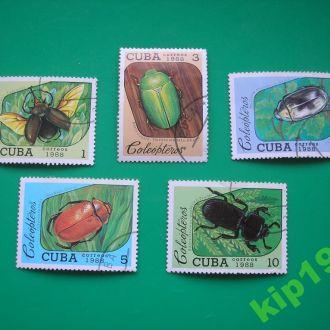 Куба.1988. Жуки.