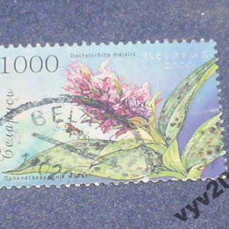 Беларусь-2006 г.-Цветы