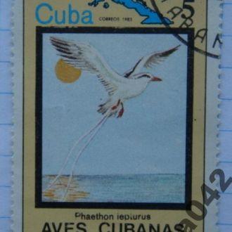 Марка почта Куба 1983 Белохвостый фаэтон Фауна