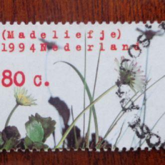 Нидерланды,1994г. цветы