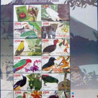 птицы пернатые птица birds фауна ПОПУГАИ