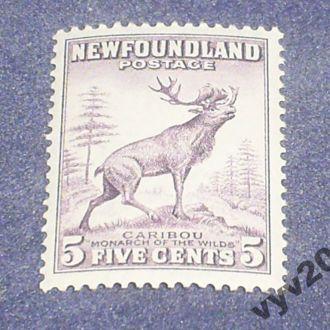 Ньюфаундленд**-1932 г.-Олень
