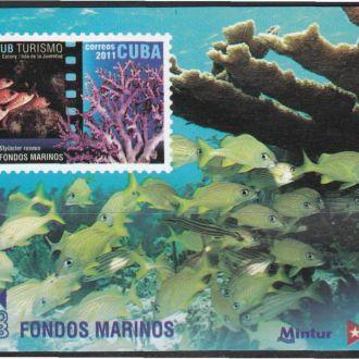 Куба 2011 ТУРИЗМ ПОДВОДНЫЙ МИР ФАУНА РЫБЫ Блок**