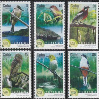 Куба 2011 ФАУНА ПТИЦЫ ОРНИТОЛОГИЯ ТУРИЗМ 6м**