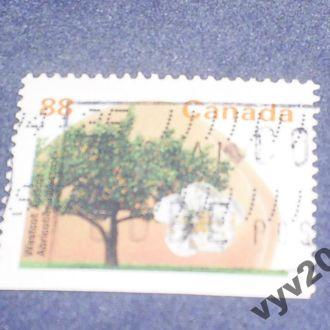 Канада-1994 г.-Абрикоса