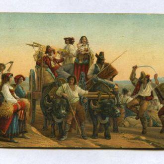 Иностранная открытка начала 20-го века .