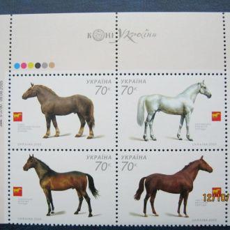 животные  звери фауна   кони лошади horses