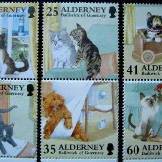 фауна кошки коты Alderney