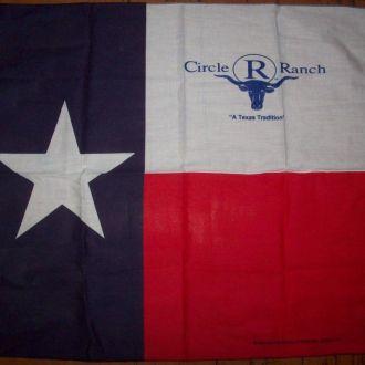 Бандана - флаг Техаса Lone Star Flag 60х55 см