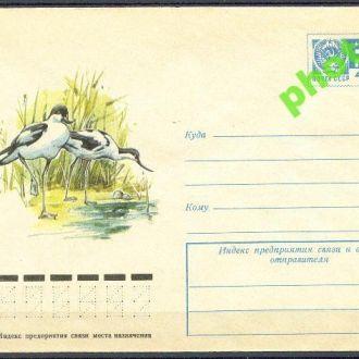 СССР 1975 ХМК* 75-335 фауна птицы