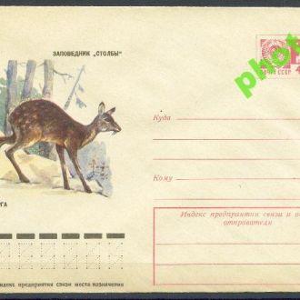 СССР 1975 ХМК* 75-532 фауна кабарга