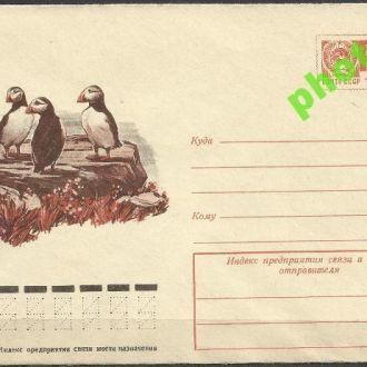 СССР 1976 ХМК* 76-659 фауна птицы тупик