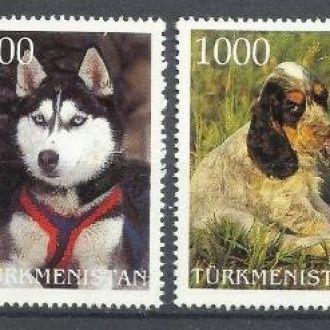 Туркменистан 199? фауна собаки 6м.**
