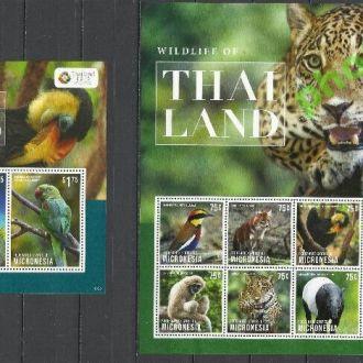 Микронезия 2013 фауна птицы попугаи Клб+бл.**