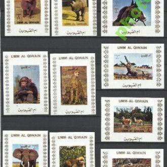 Умм-эль-Кайвайн 1972 фауна-I конь слон обезьяны 16